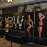 Attending the 2014 adult expo (avn) in las vegas